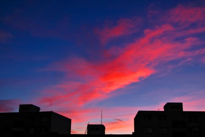 roof-tops-246217_1280